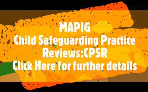 Child Safeguarding Practice Review (CSPR)